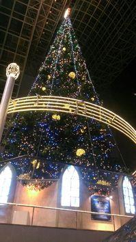 京都駅ビルツリー.jpg