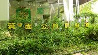 箕面公園昆虫.jpg